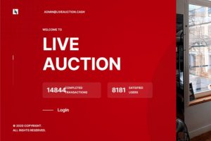 Live Auction Review